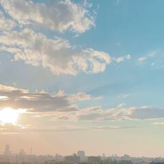 夕方/夕日/太陽/東京/おでかけワンショット 夕方学校内を歩いていたら夕日が綺麗だった…