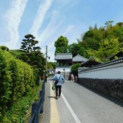 おでかけワンショット 令和元年五月、家族旅行の一コマ。福岡県某…