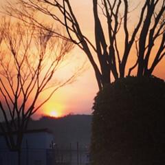 令和元年フォト投稿キャンペーン/夕焼け/空港/日没/茜色 福島空港から観た夕焼け。 朝から出張先の…