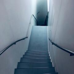 階段/草間彌生美術館/扉/希望/令和元年フォト投稿キャンペーン/光 草間彌生さんの美術館に行った時の 写真で…