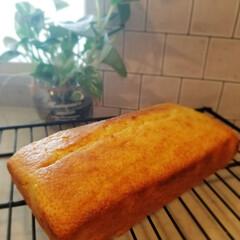 今日のおやつ/ホットケーキミックス/ホットケーキミックスのおやつ/おうちごはん 今日のおやつ😋🍴💕  *レモンケーキ* …