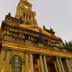 シドニー/タウンホール/夜景/わたしのお気に入り シドニーの象徴 タウンホール