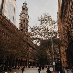オーストラリア/シドニー/タウンホール/わたしのお気に入り シドニーの街並みはどこか物寂しい