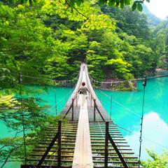 夢の吊り橋/川/山/自然/わたしのお気に入り お気に入りの吊り橋