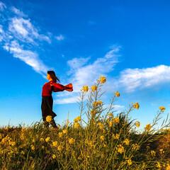菜の花/花/鳥/雲/ポートレート/おでかけワンショット 春にお花見に行った帰り道、夕陽に照らされ…