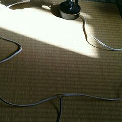 我が家の照明/洗面台/照明 自作の洗面台に照明を取り付けました。  …(3枚目)