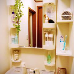 洗面台/一人暮らし 一人暮らしの洗面台。 なるべく物を減らし…