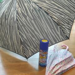 あすつく対応 ヘンケルジャパン 超強力防水スプレー ロックタイト 多用途 420ml(メッキ塗装、スプレー)を使ったクチコミ「梅雨の長雨が続いていますね。 毎日のよう…」(1枚目)