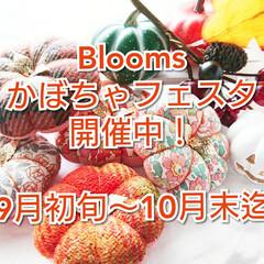 ハロウィン/かぼちゃフェスタ/minneで販売中/minne/針仕事/裁縫道具/... Bloomsかぼちゃピンクッションフェス…(6枚目)