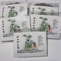 お茶/薬草/どくだみ/絵はがき/自然/ナチュラル/... 庭に自生する「どくだみ」でお茶作成 ①引…