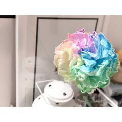 イケア/IKEA/ニトリ購入品/リビングインテリア/リビング/花のある生活/... 母の日にもらったお花✿.*·̩͙ カラフ…