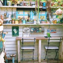 多肉植物好き/テーブルと椅子/植物のある暮らし/癒しの場所/リメイク缶/多肉植物/... 多肉植物メインのデッキガーデン☘ 癒しの…