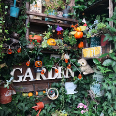 LIMIAガーデン/植物/ガーデニング/ガーデン/玄関コーナー/ハロウィンディスプレイ/... 玄関前コーナー🍀 ハロウィンディスプレイ…