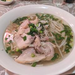 パクチー/小岩/ベトナム料理/小岩駅/フォーおいしい/フォー/... 小岩にある「フォーおいしい」って名前のベ…