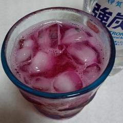 赤じそジュース あか紫蘇を購入 この時期になると出回りま…