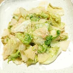 バター/明太子/レタス/コールラビ/旬/野菜料理/... 【🌿コールラビとレタスの明太バター🌿】 …