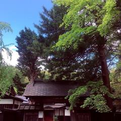 秋田/武家屋敷/おでかけワンショット 武家屋敷に行ってきた