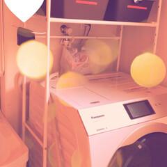 プレーンボックス フタ付 M ストーングレー(収納ケース)を使ったクチコミ「洗濯機の上のスペースがもったいないのと、…」