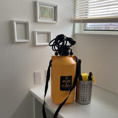 おそうじ用ポンプ式水圧クリーナー クリーンマスター 8L 水タンク 放水 シャワー 屋外掃除(高圧洗浄機)を使ったクチコミ「今日は晴れていたので、バルコニー掃除をし…」