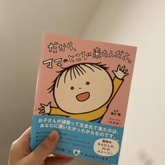 胎児超音波心音計 エンジェルサウンズ Angelsounds JPD-100S mini(デスクライト)を使ったクチコミ「胎内記憶というものがあるそうで、 子供た…」