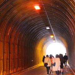 トンネル/鎌倉/散歩/おでかけワンショット トンネルの先は…?(1枚目)