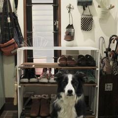 シューズラック/すのこリメイク/DIY/玄関 下駄箱にはいりきらない靴を何とかしたくて…
