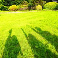 おでかけ/お散歩/お写んぽ/友人/カメラ/仲良し/... 【友人と新宿御苑でパシャリ!おでかけワン…(1枚目)