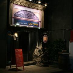 石/吹付材/レッド&ブルー 古いお城の装飾を切り取り、店内のコンセプ…