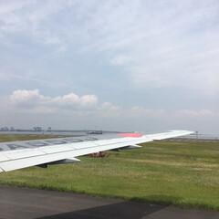 空港/空/はじめてフォト投稿 旅立ちの朝