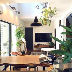 吹き抜けリビング/壁掛けテレビ/観葉植物/一枚板のテーブル/カフェ風インテリア ウッドデッキにサンシェードをつけたから朝…
