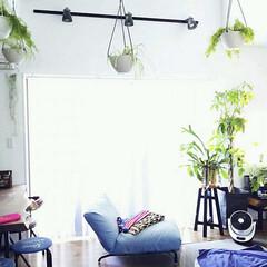 Roomclip/カフェ風インテリア/デニム/椅子カバー/吹き抜けリビング/観葉植物のある暮らし/... ファブリック系はデニムなどのブルーが好み…