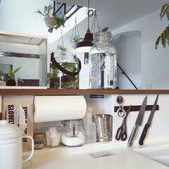 マグネット収納/キレイを保つ/掃除アイデア/ニッチ/キッチンカウンター/カフェ風/... キッチンカウンター内のニッチには食洗機洗…