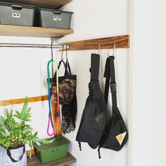 エコカラットDIY/エコカラット/玄関収納/玄関/ボディバッグ/ウエストポーチ/... 久しぶりにダンナとオソロでボディバッグを…