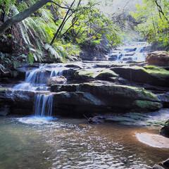 ブルー・マウンテンズ/シドニー/オーストラリア/自然/緑/はじめてフォト投稿 シドニー、ブルー・マウンテンズ