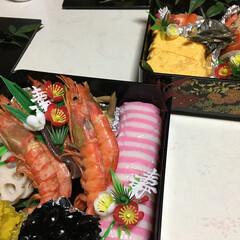 おせち料理/料理/おせち/正月/2020/お正月2020 広島の実家で作ったおせち料理です。