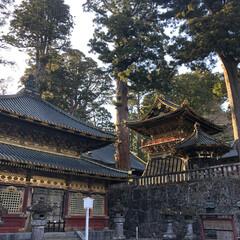 おでかけワンショット/栃木/神社/東照宮/日光 春の緑と神社
