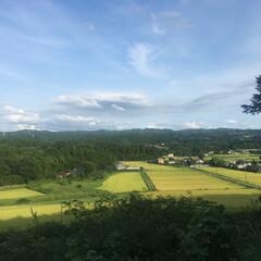 千葉県/田んぼだらけ/平和/わたしのお気に入り 千葉某所から。 落ち着く。
