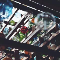おでかけワンショット/埼玉県/川越市/氷川神社 埼玉県川越市の川越氷川神社の縁結び風鈴。…
