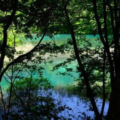 福島県/裏磐梯/五色沼/空/湖/青/... 福島県、裏磐梯の五色沼湖沼群。一番のお気…