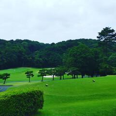 ゴルフ/よみうりゴルフ倶楽部 梅雨の合間のゴルフ⛳雨も雷も無く楽しいゴ…