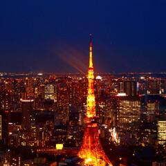 東京タワー/はじめての投稿/夜景/はじめてフォト投稿 この距離からの東京タワーって迫力がありま…