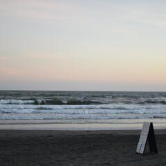 由比ヶ浜/海/ビーチ/子供/看板/砂浜/... 由比ヶ浜の海で撮れた一枚
