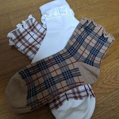 秋色ファッション/ソックス/チュチュアンナ/靴下 チュチュアンナでお買い物❤️チェック柄に…