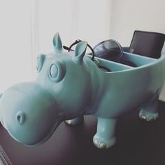 雑貨/収納グッズ/収納用品/置物/インテリア/リビング収納/... Hippoの小物入れ。 置いておくだけで…