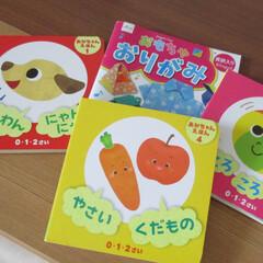 最近買った100均グッズ 子供用の絵本、100円ショップで買いまし…