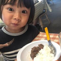 食いしん坊/さわやか/ハンバーグ/はらぺこグルメ さわやかのハンバーグを食べに行った時の写…