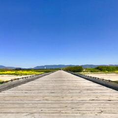 橋/観光スポット/みんなにオススメ/流れ橋/京都府/みんなにおすすめ みんなにオススメしたい、観光スポット 『…