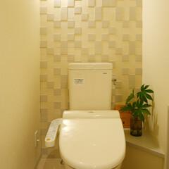 エコカラット/調湿/吸臭 エコカラットの壁はトイレの空気をいつも新…