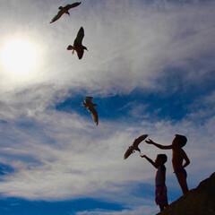 夏/カモメ/子供/太陽/青空/令和元年フォト投稿キャンペーン 海に行ってウチの子がカモメにパンをあげた…