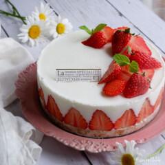おうちカフェ/手作りケーキ/手作りスイーツ/いちご/♯ヨーグルトムースケーキ/令和元年フォト投稿キャンペーン/... こちらも少し前に作った物ですが いちごの…